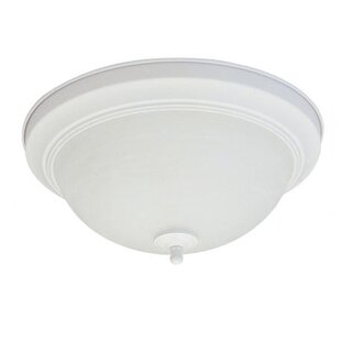 18W 2-Light Energy Star Flush Mount by Royal Pacific