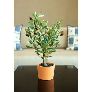 Home Depot Faux Olive Trees