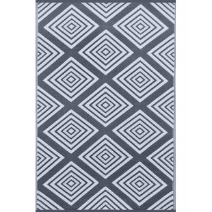 Top Lightweight Legend Charcoal Gray/White Indoor/Outdoor Area Rug ByWildon Home ®