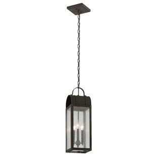 Canora Grey Bridlington 3-Light Outdoor Pendant
