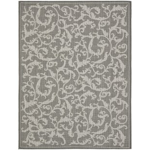 Gulf Anthracite Gray Indoor/Outdoor Area Rug