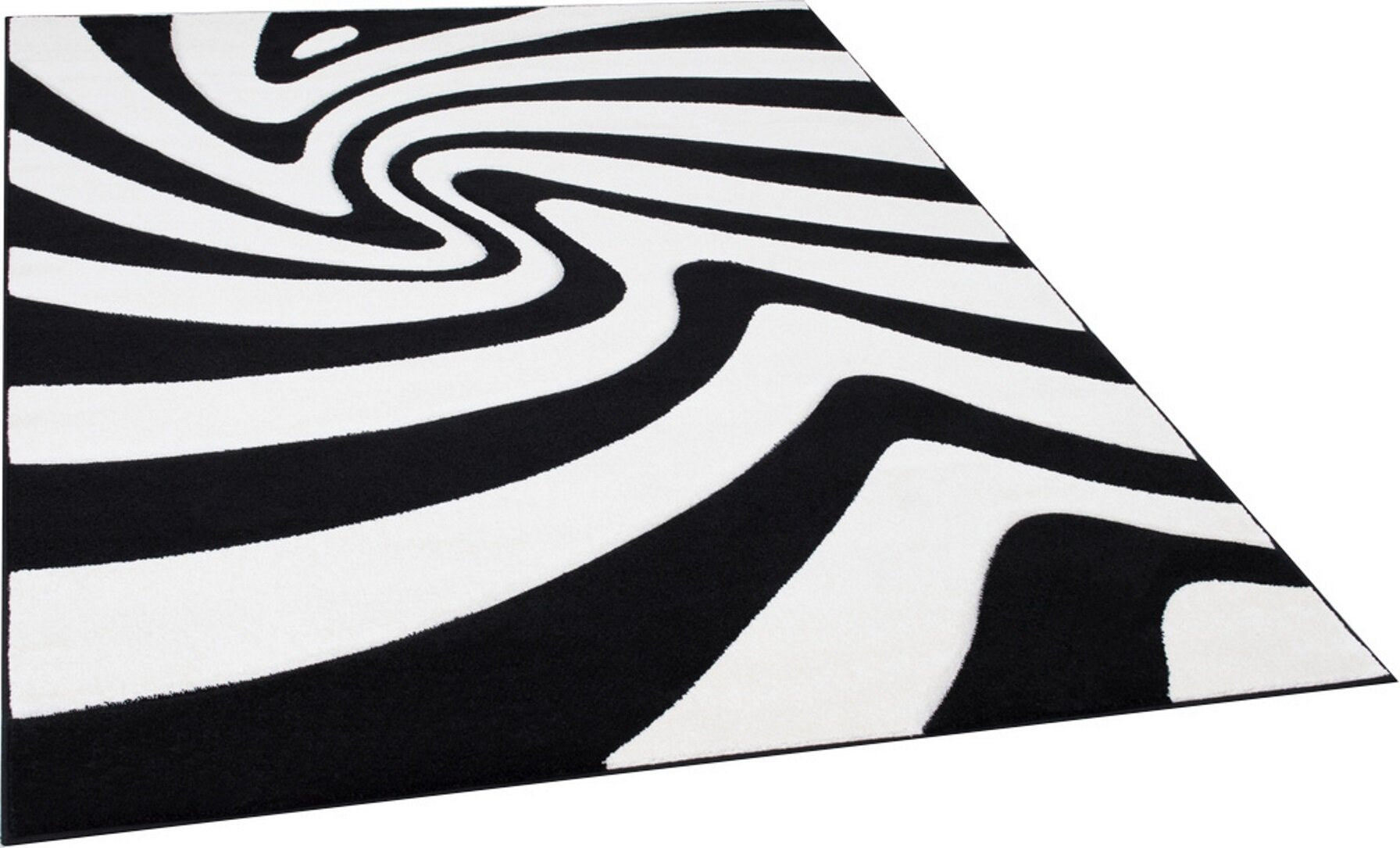 Picture of: Brady Home Abstract Black White Area Rug Wayfair