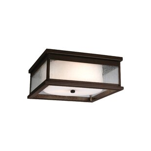 Darby Home Co Hazelwood 2-Light Outdoor Flush Mount