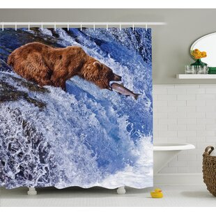 Nature Grizzly Bear at Katmai Print Single Shower Curtain
