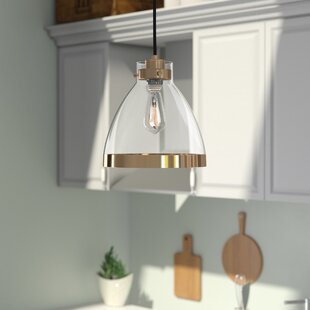 Douglas Forge 1-Light Cone Pendant