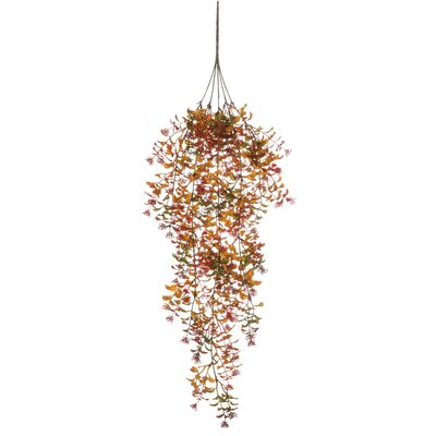 Autumn Hanging Foliage Plant (Set of 2) The Holiday Aisle