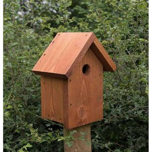 Wester Post Mounted Birdhouse By Sol 72 Outdoor