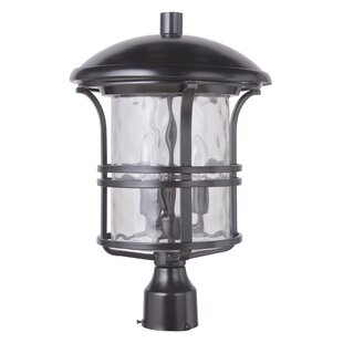 Price Check Concetta 3-Light 18.25 Lantern Head By Darby Home Co