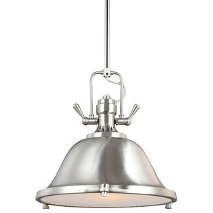 Darby Home Co Chiaramonte 1-Light Bowl Pendant