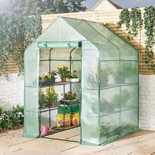 Greenhouses & Cold Frames You'll Love in 2019 | Wayfair co uk