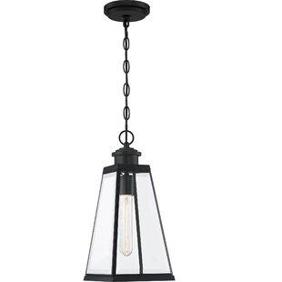 Bednar 1-Light Outdoor Hanging Lantern By Breakwater Bay