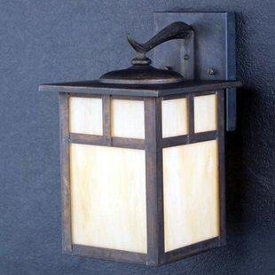 Daveney 1-Light Opalescent Glass Outdoor Wall Lantern