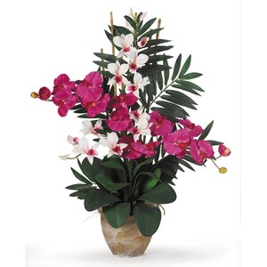 Double Phalaenopsis and Dendrobium Silk Orchid with Vase