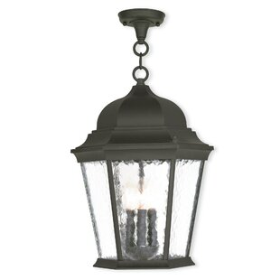 Busse 3-Light Outdoor Hanging Lantern By Darby Home Co Outdoor Lighting