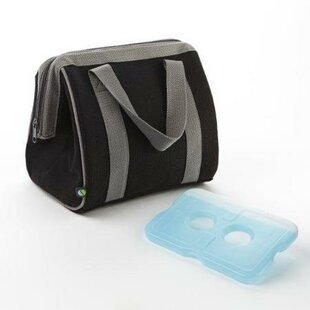 Big Insulated Lunch Bag