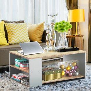DaniMay Floor Shelf Coffee Table with Storage