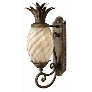 Beachcrest Home Terry Pineapple-Shaped Outdoor Wall Lantern