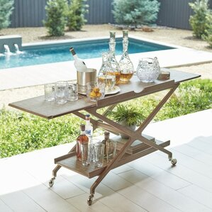 Campaign Bar Cart by Global Views