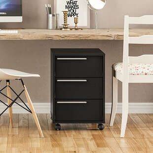 Zipcode Design Kolton 3 Drawer Vertical F..