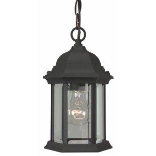 Charlton Home Oakhill 1-Light Hanging Lantern