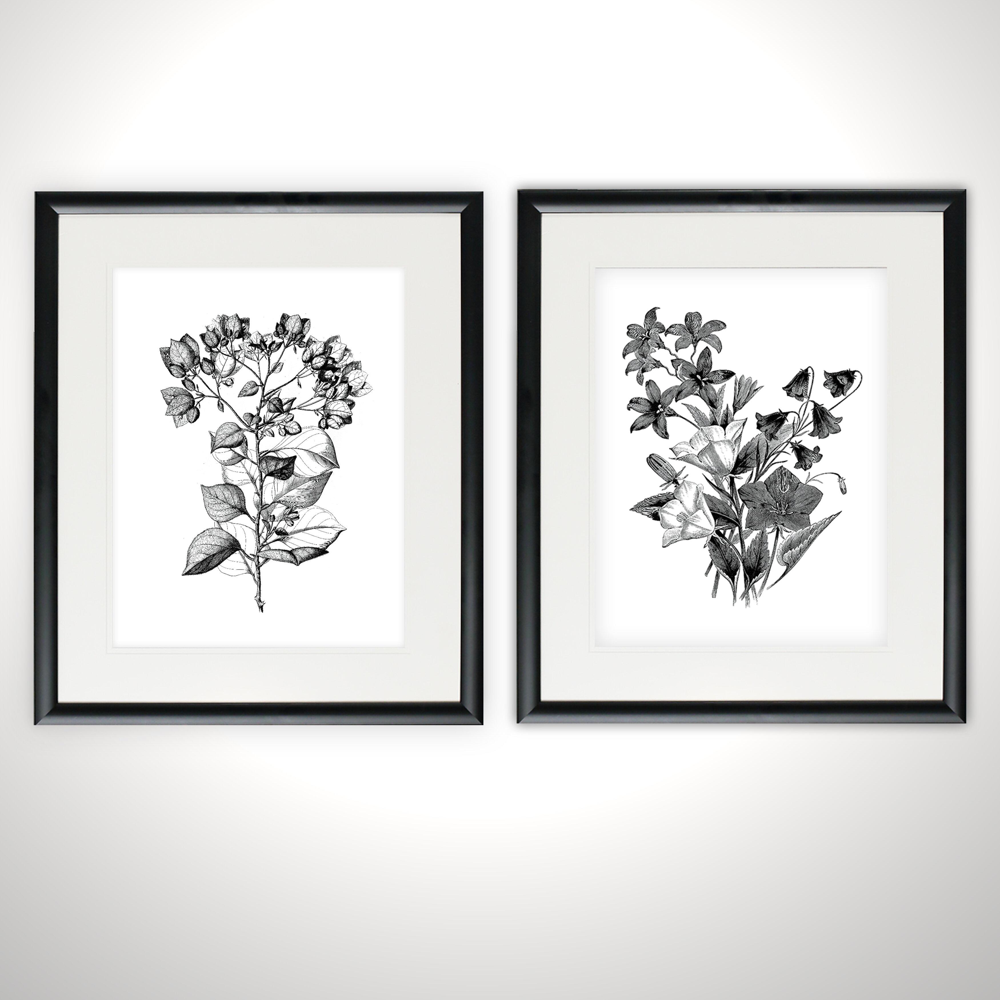 d4e9d9142fb  Botanical Black and White  2 Piece Framed Acrylic Painting Print Set    Reviews