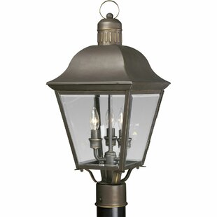 Best Reviews Triplehorn 3-Light Lantern Head in Bronze By Alcott Hill