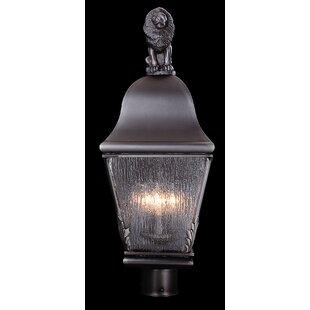 Framburg Coeur de Lion 3-Light Lantern Head
