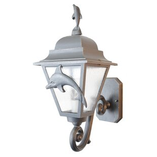 Alcott Hill Penfield 1-Light Outdoor Sconce