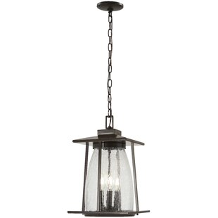 Helmick 4-Light Outdoor Hanging Lantern