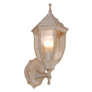 Sharyn 1 Light Outdoor Wall Light By Marlow Home Co.