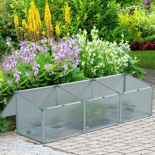 Damian 6 Ft W X 1.7 Ft D Cold-Frame Greenhouse By Sol 72 Outdoor