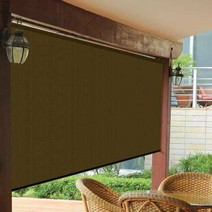 window roller shades victorian semisheer mocha outside roller shade window shades wayfair