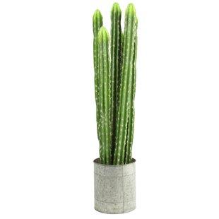 Artificial Cactaceae Plant In Pot Image