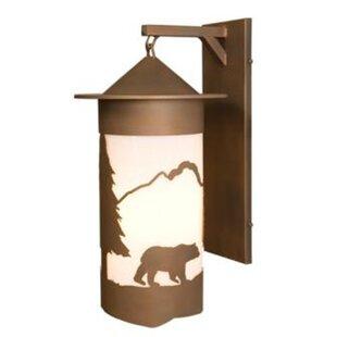 Extra large outdoor wall light wayfair bear pasadena extra large hanging 1 light outdoor wall lantern aloadofball Choice Image