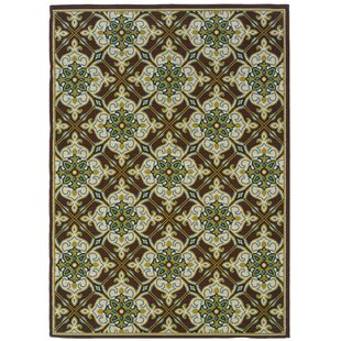 Mirari Brown/Ivory Indoor/Outdoor Area Rug