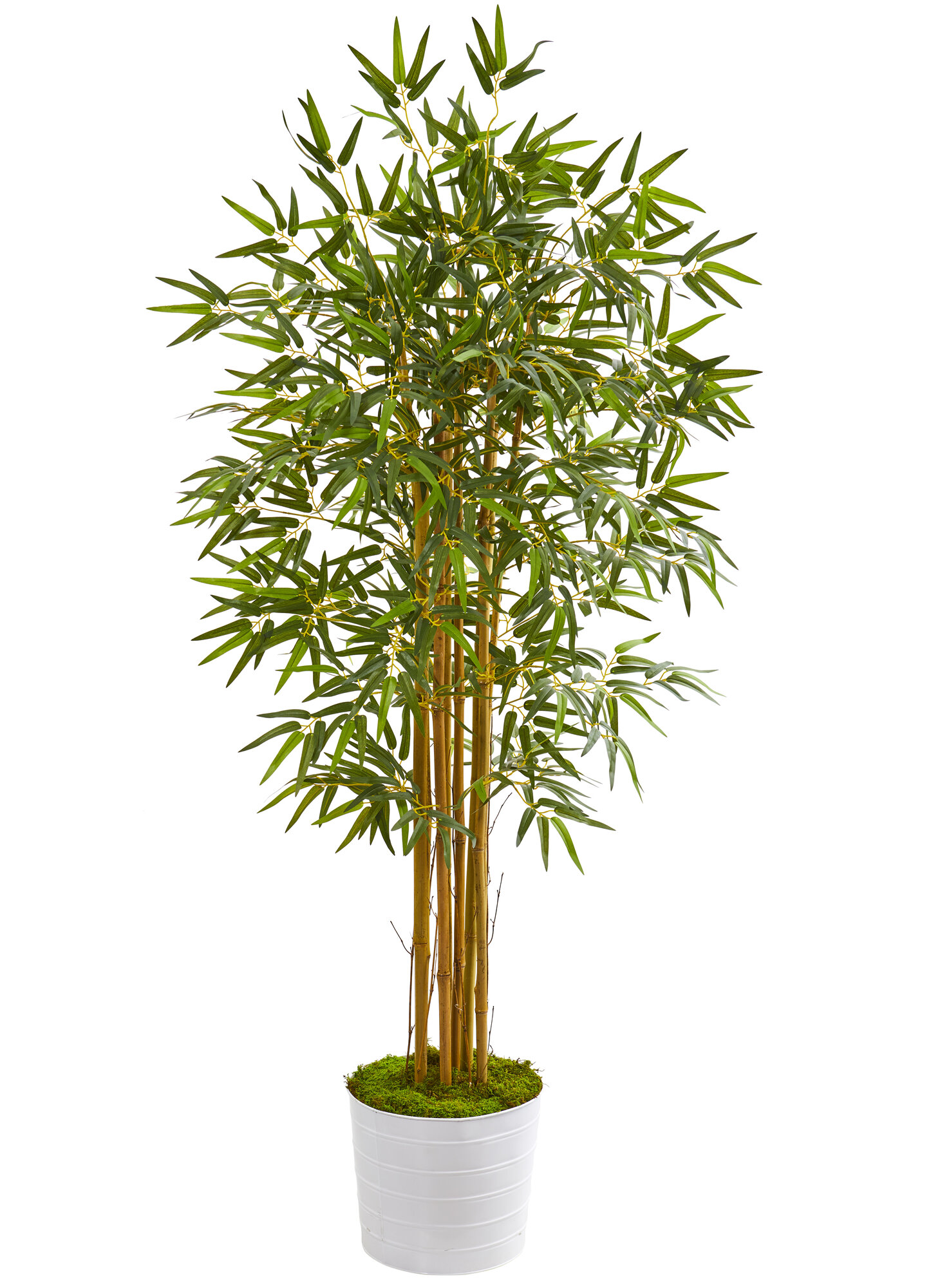 World Menagerie Artificial Bamboo Tree In Planter Wayfair