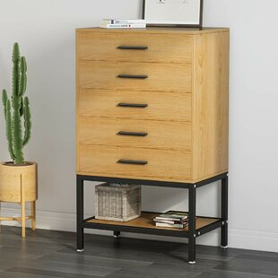 Avelina 5 Drawer Accent Chest
