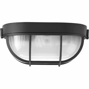 Briaca 1-Light Outdoor Flush Mount By Breakwater Bay Outdoor Lighting