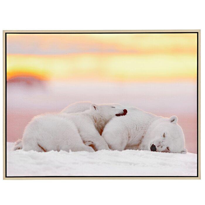 Majestic Mirror Cuddling Polar Bear Framed Photographic Print on ...