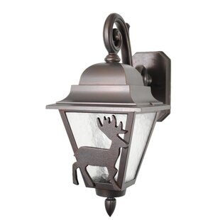Price comparison Penfield 1-Light Outdoor Wall Lantern By Alcott Hill