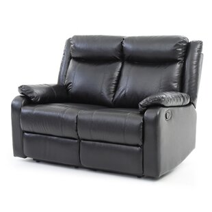 Weitzman Double Reclining Loveseat by Red Barrel Studio