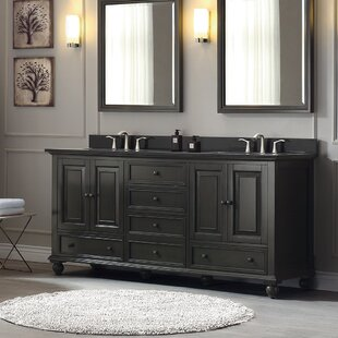 Thompson 73 Double Modern Bathroom Vanity Set By Avanity