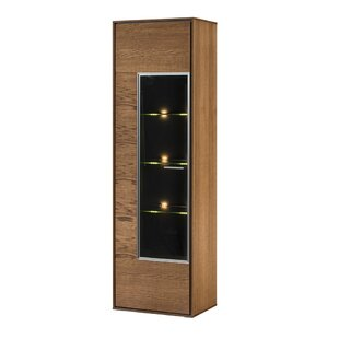 Thiago 1 Door Accent Cabinet by Union Rustic