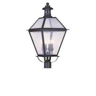 Darby Home Co Outdoor 4-Light Lantern Head