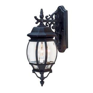 Shopping for Talon 1-Light Outdoor Wall Lantern By Astoria Grand