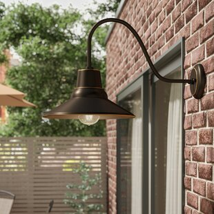 Buy luxury Chestertown 1-Light Outdoor Barn Light By Ebern Designs