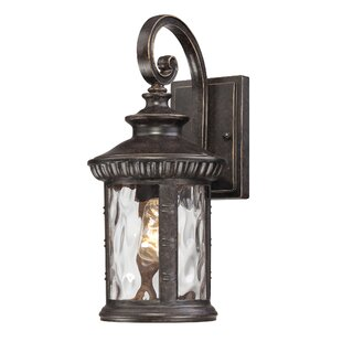Looking for Baxter 1-Light Outdoor Wall Lantern By Astoria Grand