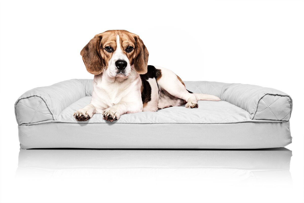 Zoey Tails Quilted Orthopedic Sofa Style Dog Bed & Reviews
