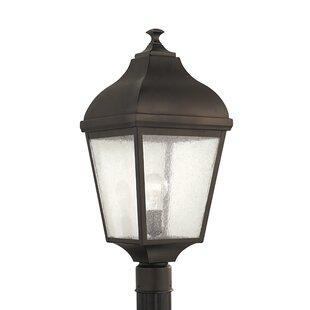 Darby Home Co Bridport Outdoor 1-Light Lantern Head
