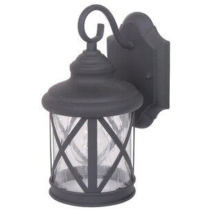 Alcott Hill Ruggerio 1-Light Outdoor Wall Lantern